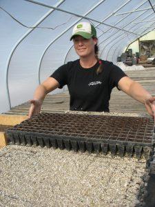 Amanda seeding kale